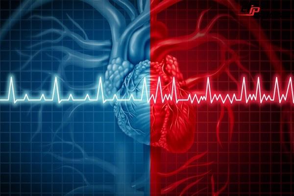 Bệnh tim mạch là một trong những nguy cơ gây tử vong cao hiện nay
